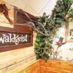 Geburtstagsraum Waldgeist in Oskarshausen