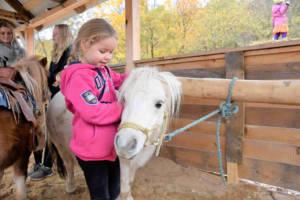 Besuche unsere vierbeinigen Freunde auf der Pistolero Ranch. Hier kannst du unsere Ponys streicheln und auch reiten.