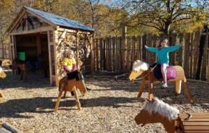 Satteln, trensen, reiten... Für echte Pferdefans!