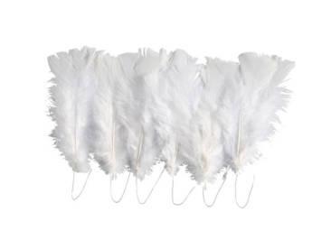 weiche weiße Federn für jeden Bastelspaß